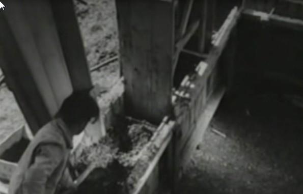 bioconstrucion-steampunk1948